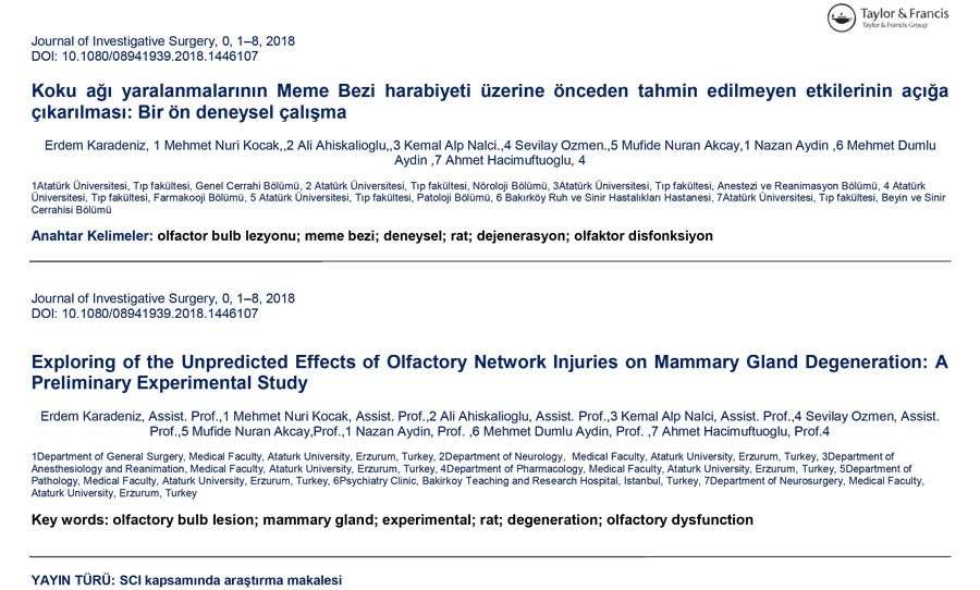 Koku ağı yaralanmalarının Meme Bezi harabiyeti üzerine önceden tahmin edilmeyen etkilerinin açığa çıkarılması: Bir ön deneysel çalışma