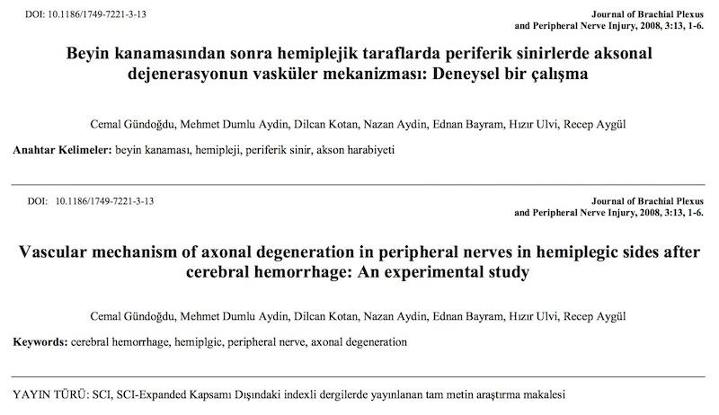 Beyin kanamasından sonra hemiplejik taraflarda periferik sinirlerde aksonal dejenerasyonun vasküler mekanizması: Deneysel bir çalışma