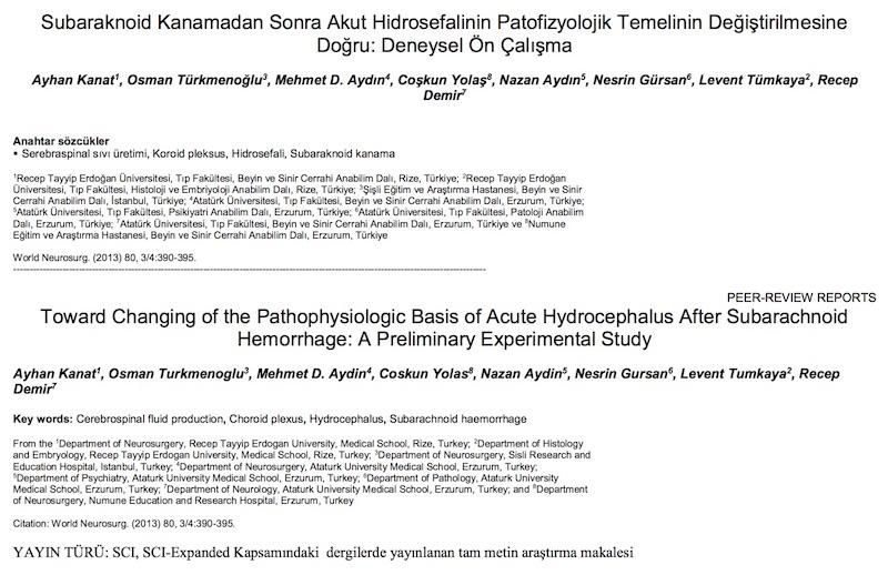 Subaraknoid Kanamadan Sonra Akut Hidrosefalinin Patofizyolojik Temelinin Değiştirilmesine Doğru: Deneysel Ön Çalışma