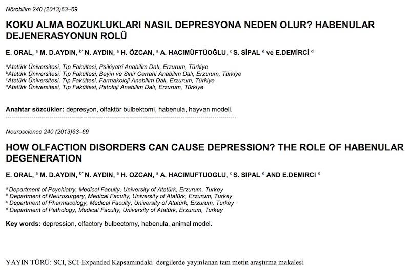KOKU ALMA BOZUKLUKLARI NASIL DEPRESYONA NEDEN OLUR? HABENULAR DEJENERASYONUN ROLÜ