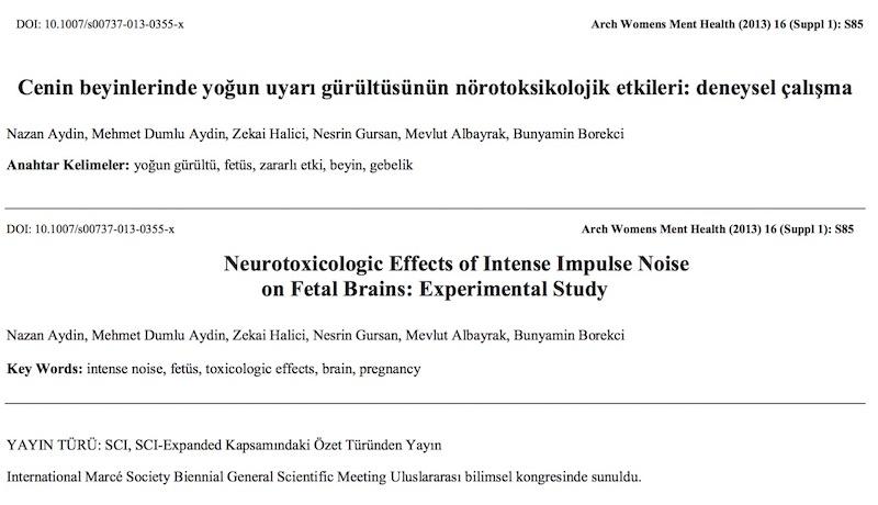 Cenin beyinlerinde yoğun uyarı gürültüsünün nörotoksikolojik etkileri: deneysel çalışma