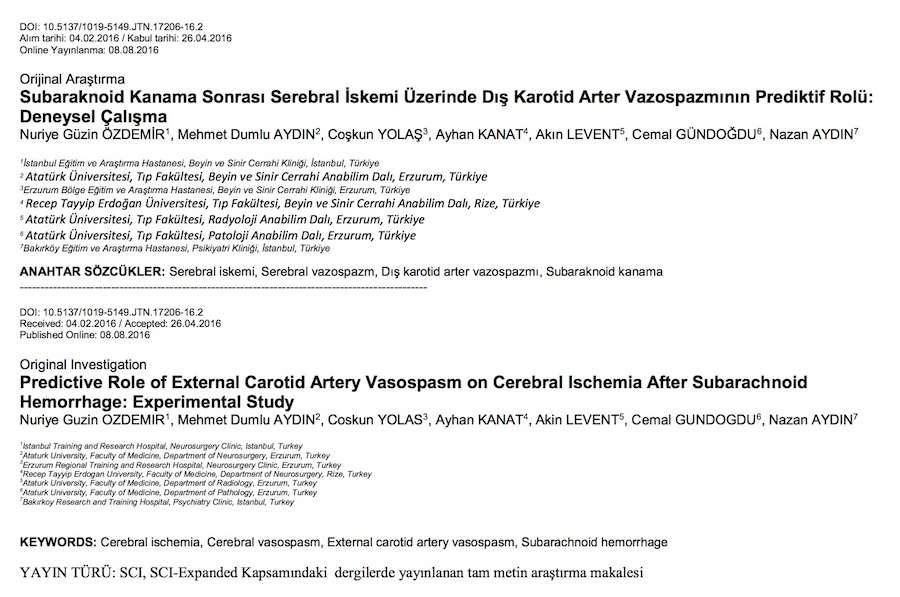 Subaraknoid Kanama Sonrası Serebral İskemi Üzerinde Dış Karotid Arter Vazospazmının Prediktif Rolü: Deneysel Çalışma