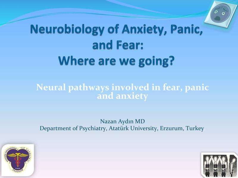 Anksiyete, Panik ve Korku  Nörobiyolojisi Nereye Gidiyoruz?