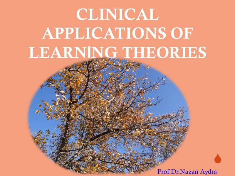 Clinical Application of Learning Theories