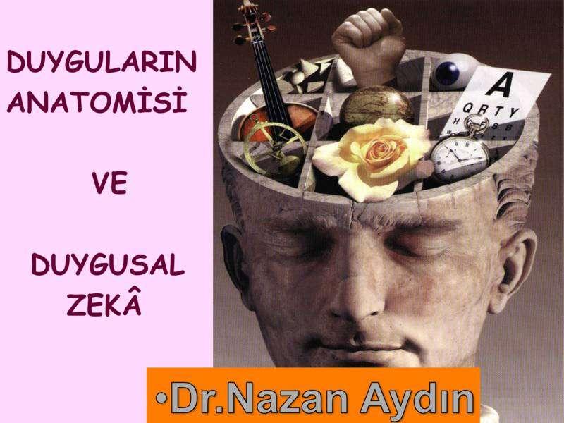 Duyguların Anatomisi