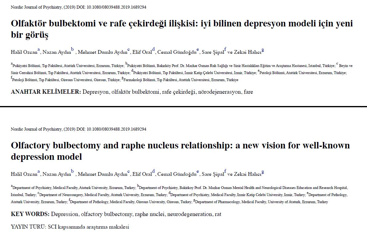 Olfaktör bulbektomi ve rafe çekirdeği ilişkisi: iyi bilinen depresyon modeli için yeni bir görüş